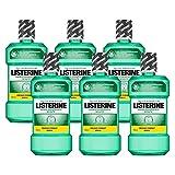 Listerine Zahn- und Zahnfleischschutz Mundspülung, umfassendes Mundwasser, antibakteriell für gesundes Zahnfleisch (6 x 600 ml)