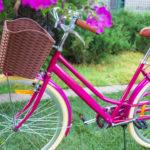 Nicht immer ist eine Fahrradtasche nötig, manchmal reicht auch ein Fahrradkorb. Foto: Galyna_Andrushko via Envato